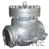 Swing-type Check Valves With Passby Line