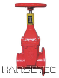 Groove and flange Valve with Indicator