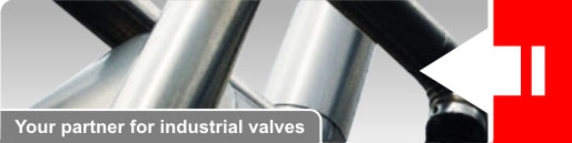 Your partner for industrial valves